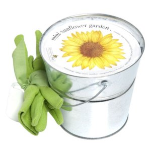 mini-sunflower-kit