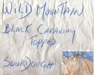 Wild Mountain logo001
