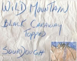 Wild Mountain logo001